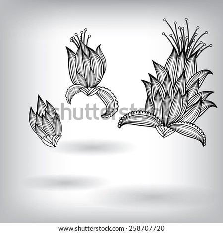 Hand Drawn Floral Elements for Design, EPS10 Vector background
