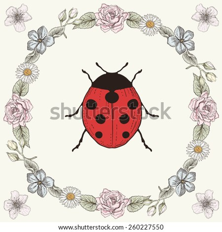 Hand drawn floral frame and ladybird. Ornate colorful illustration. Vintage engraving style - stock vector