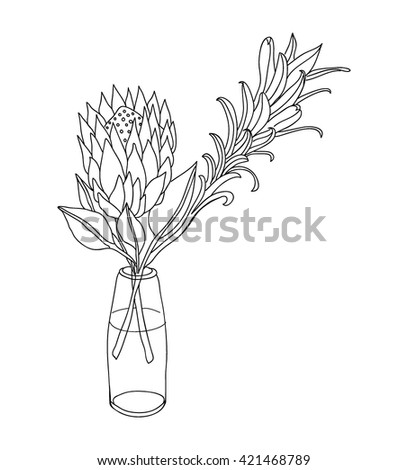 Hand Drawn Flower Glass Vase Line Stock Vector 421468789 Shutterstock