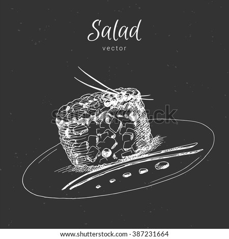 Hand drawn food appetizer and salads