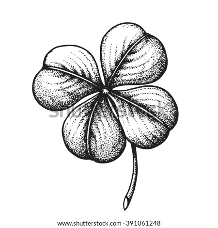 Hand drawn Four Leaf Clover. Saint Patricks Day. Vector illustration