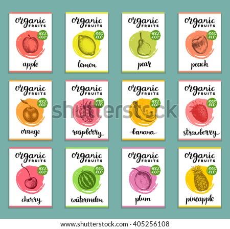 Hand drawn fruits banners set. Organic eco food. Fruits and berries sketch vector illustration. Plum, Lemon, Orange, Apple, Watermelon, Peach, Strawberry, Banana, Pear, Pineapple, Raspberry, Cherry.  - stock vector
