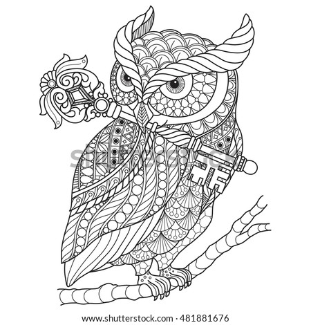Hand Drawn Gorgeous Owl Color Book Stock Vector 481881676
