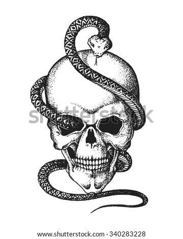 Hand drawn human skull entwined by snake. Vector illustration - stock vector