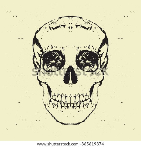 Hand Drawn human Skull. Vector Illustration.