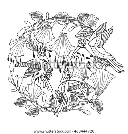 hand drawn hummingbird and flowers for color book for adult other decorations isolated on white - Hummingbird Flower Coloring Pages