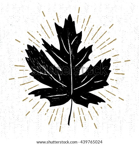 Hand drawn icon with a textured maple leaf vector illustration. - stock vector
