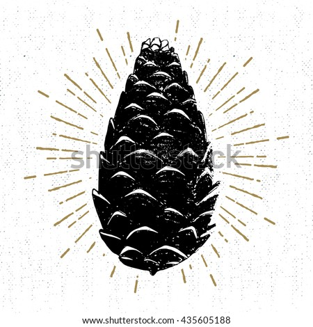 pine cone silhouette stock images royaltyfree images