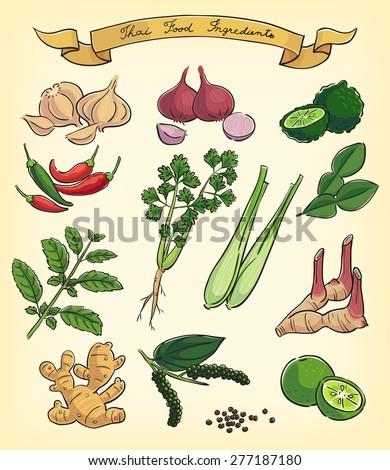 hand drawn illustration of Thai food ingredients - stock vector