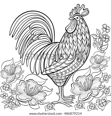 coloring book for adult cock rooster