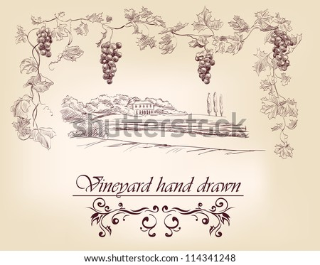 hand drawn label vineyards vector illustration  isolated - stock vector