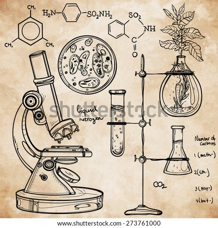 Hand drawn linear laboratory icons. Vector illustration. Vintage lab set. Science objects doodle style sketch. Back to school. Alchemy occult chemistry geology, biology, medicine. Aged beige paper . - stock vector
