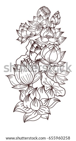 hand drawn lotus flower,vector for coloring book, flower of buddha