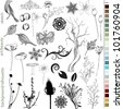Hand Drawn Natural Elements - stock vector