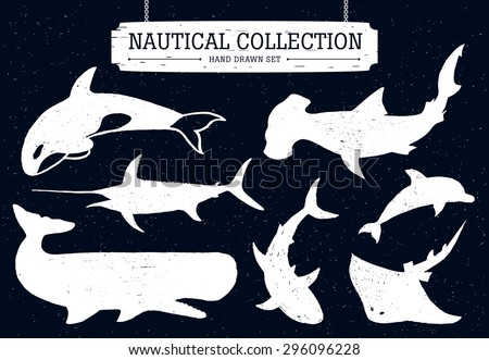 Hand drawn nautical collection of fish and sea inhabitants on black background. Dolphin, white shark, killer whale, cachalot, hammer-head, swordfish, and ramp. - stock vector