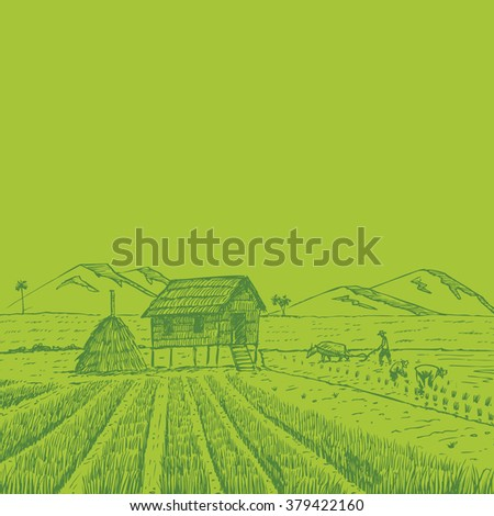 Hand drawn of Thai farmers working in the rice filed - stock vector