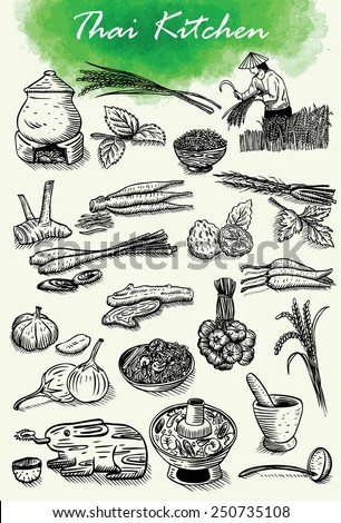 Hand drawn of Thai herbs and food, vector - stock vector