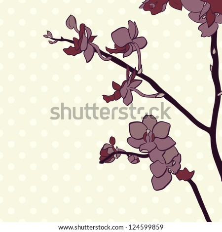 Hand drawn orchid branch on the polka dot background. Branch of a tender flowers. Vector illustration.
