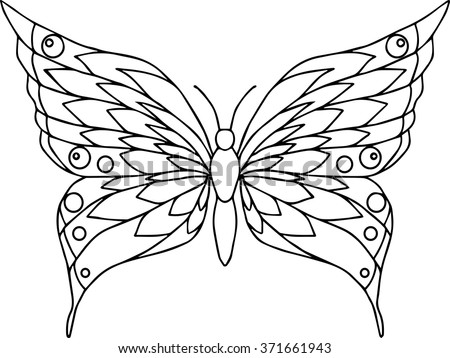 butterfly outline stock images royaltyfree images