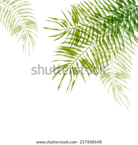 Hand drawn palm tree leaves background - stock vector