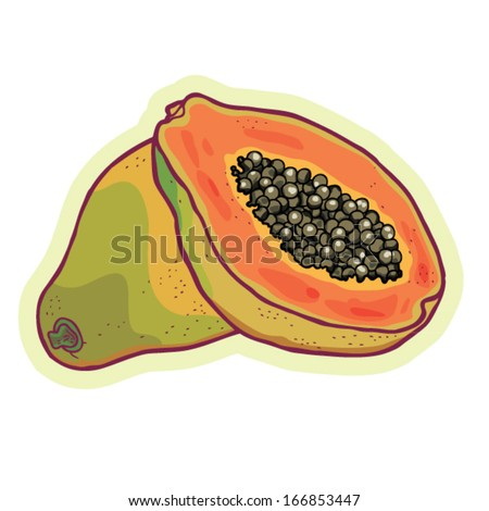 Hand drawn papaya cartoon vector.