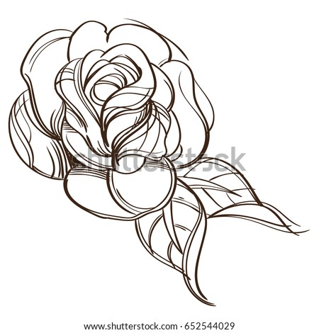 Hand Drawn Rose Floral Design Element Stock Vector 652544029 ...