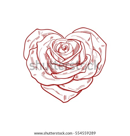 Hand Drawn Rose Shape Heart Vector Stock Vector 554559289 Shutterstock