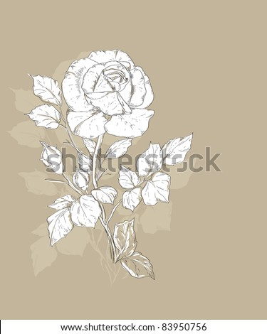 hand drawn rose vector illustration - stock vector