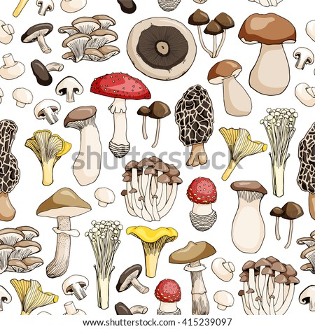 Hand drawn seamless pattern of mushroom and toadstools. Isolated on white background. Vector illustration.