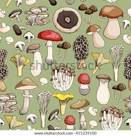 Hand drawn seamless pattern of mushroom and toadstools. Vector illustration.
