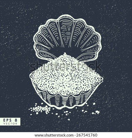 Hand drawn seashell with salt on the sandy background - stock vector