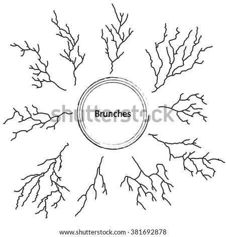 Hand-drawn set of branches, elements for your design, vector illustration
