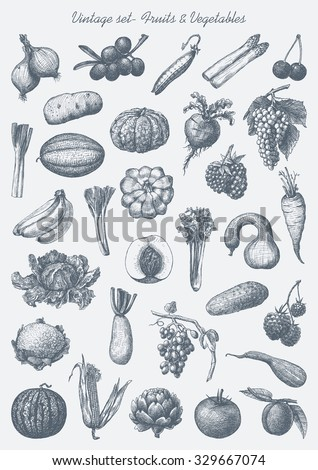 Hand drawn set - vintage vegetables & fruits - stock vector