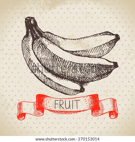 Hand drawn sketch fruit banana. Eco food background. Vector illustration - stock vector
