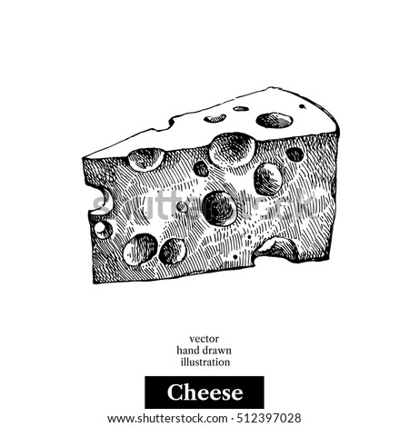 Hand drawn sketch piece of cheese. Vector black and white vintage illustration. Isolated object on white background