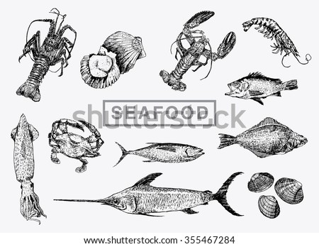 Sole Fish Stock Images Royalty-Free Images U0026 Vectors | Shutterstock