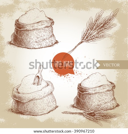 Hand drawn sketch style set of sacks with whole flour and wheat bunch. Bag with sugar, flour sack with wooden scoop, wheat sheaf. Bakery and mill symbol. - stock vector