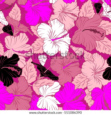 Hand drawn sketch.  Vector illustration. Hibiscus flowers in pink and magenta colors. Of pink and magenta hibiscus flowers, blossom with leaves isolated.