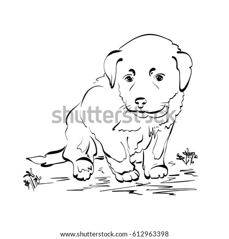 hand drawn sketch with puppy awesome cute pet dog isolated on white background drawing