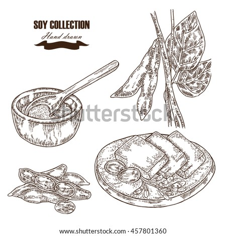 Soybean Stock Photos, Royalty-Free Images & Vectors ...