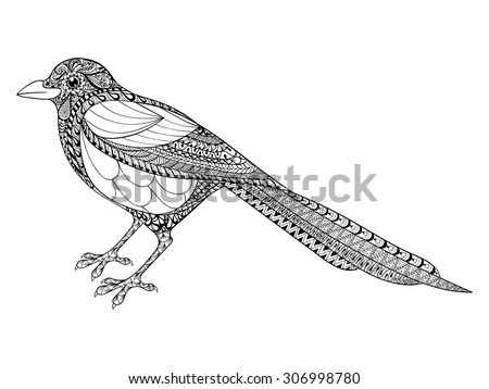 Hand drawn Totem Magpie illustration for anti stress adult Coloring Page with high details isolated on white background, in zentangle style. Vector monochrome sketch. Bird collection. - stock vector