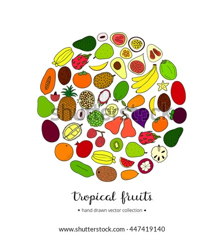 Hand drawn tropical fruits in circle shape with lettering.