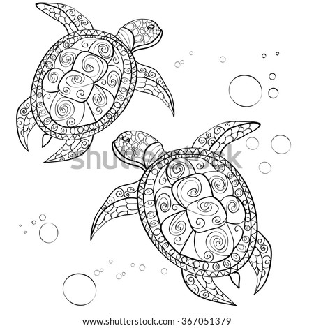 Hand Drawn Turtle Isolated White Stock Vector