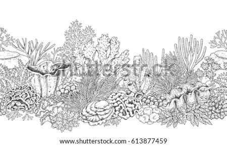 hand drawn underwater natural elements seamless stock