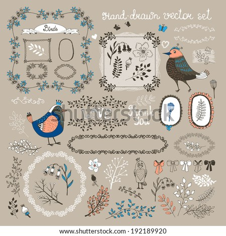 hand drawn vector birds twigs flowers and frames