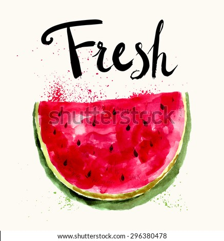 Hand drawn vector bright watermelon in watercolor technique.  - stock vector