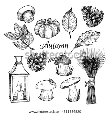Hand drawn vector illustration - Autumn. Design elements for invitations, greeting cards, quotes, blogs, posters and more. - stock vector