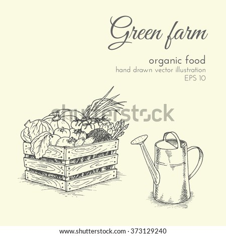 hand drawn vector illustration of organic products. sketch farmer harvest vegetables and watering can. healthy food - stock vector