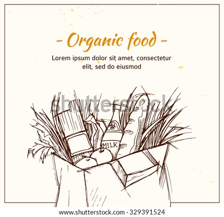 Hand drawn vector illustration - Supermarket shopping bag with organic food. Grocery store. - stock vector