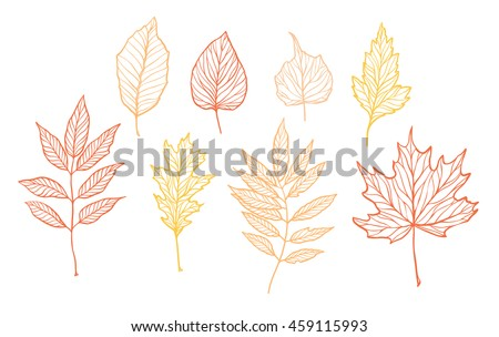 Hand drawn vector illustrations. Set of fall leaves. Forest design elements. Hello Autumn!